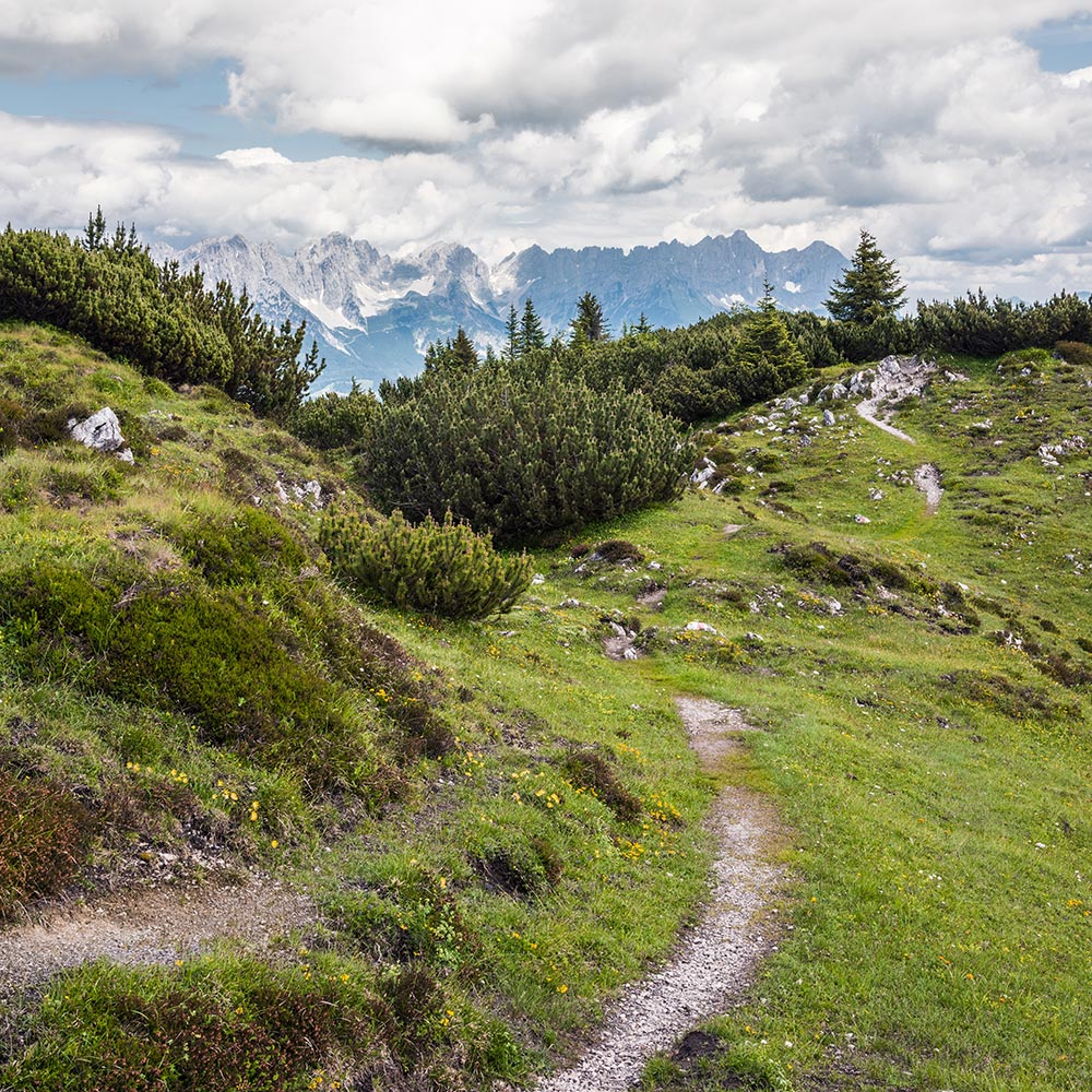Hiking in the Kitzbühel Alps Hotel Restaurant Spa Rosengarten Tyrol